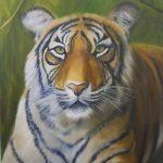novus art tiger sandra kidd