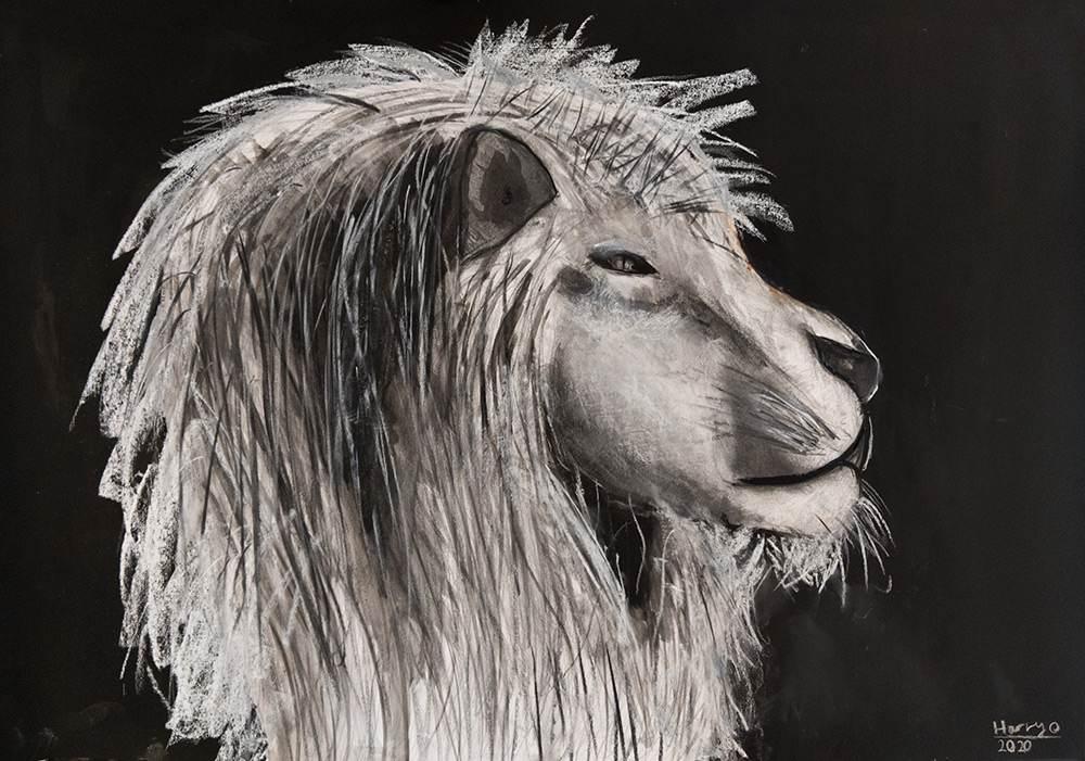 novusart-studio-harry-owen-lion-charcoal